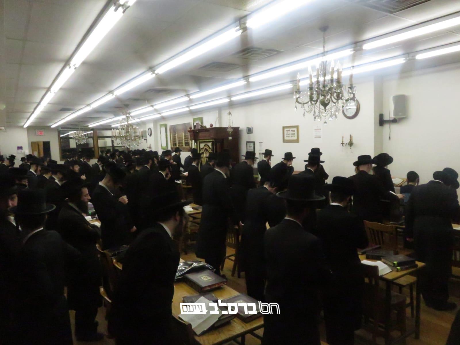 ווילאמסבורג • מעמד ספירת 'מלכות שבמלכות' בבית הכנסת ברסלב 306 ראדליטש • צפו