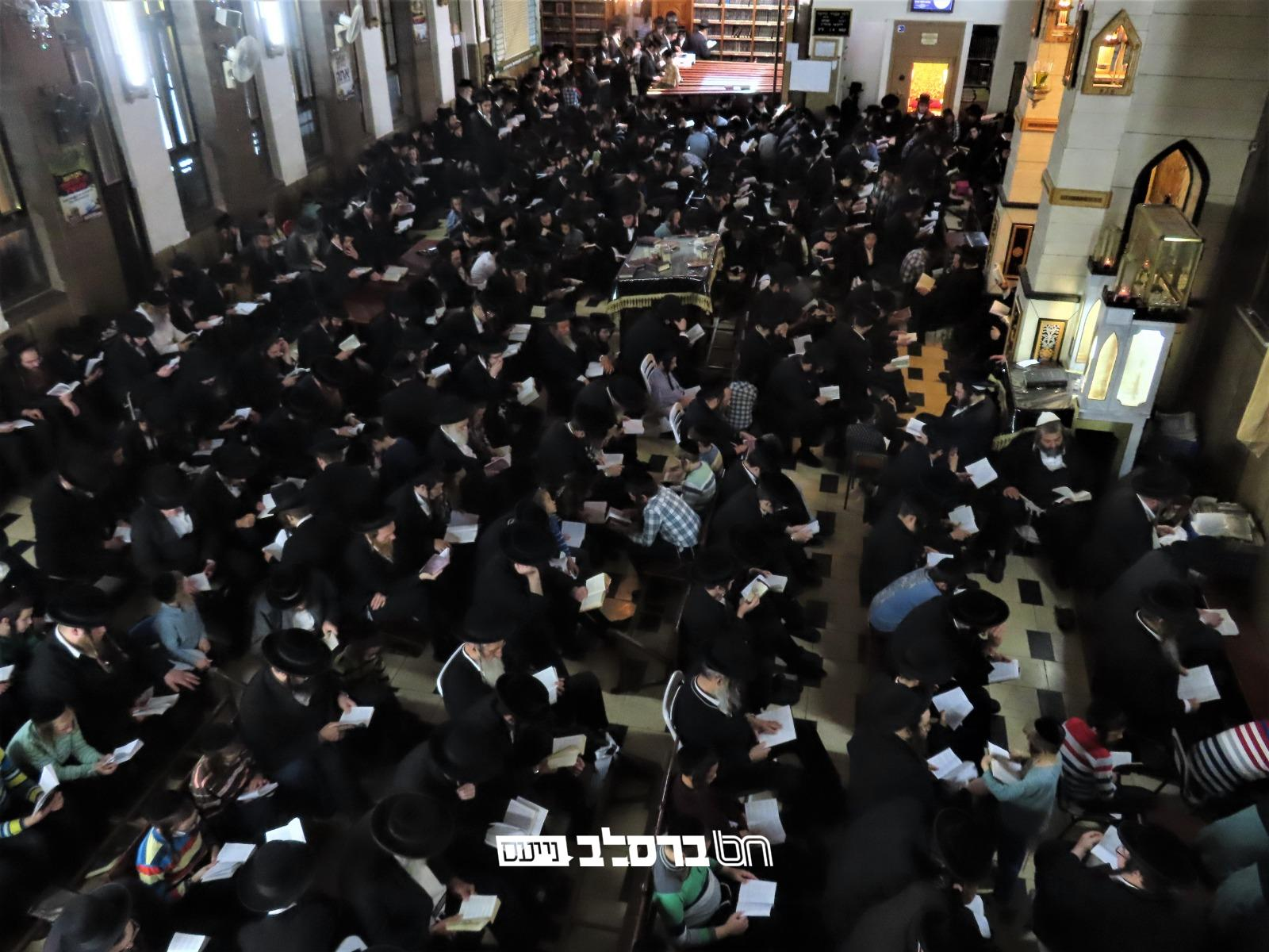בָּכוֹ תִבְכֶּה בַּלַּיְלָה • אמירת הקינות בליל תשעה באב בבית הכנסת הגדול דחסידי ברסלב במאה שערים • צפו