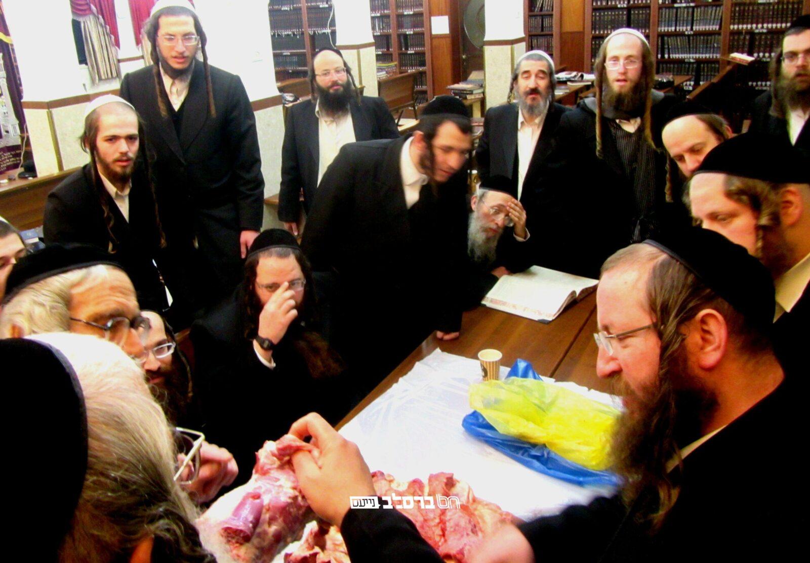 שיעור מרתק בהלכות טריפות מהרב שלום זוהר בכולל חצות 'אורות הנחל' שבבית הכנסת הגדול שבירושלים השול