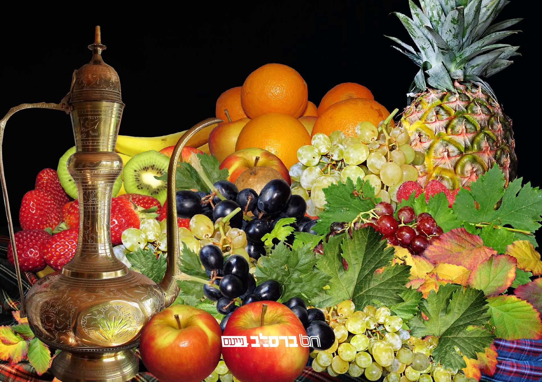 חֲמִשָה עָשָר בִשְבָט • ראש השנה לאילנות בתורת ברסלב