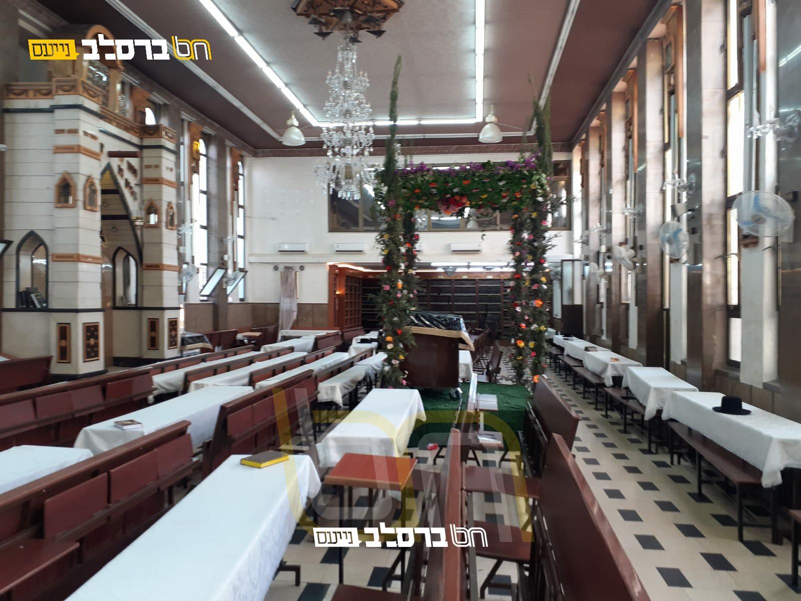 צִצִּים וּפְרָחִים • בית הכנסת הגדול שבירושלים בחופת עצים ופרחים לקראת חג השבועות