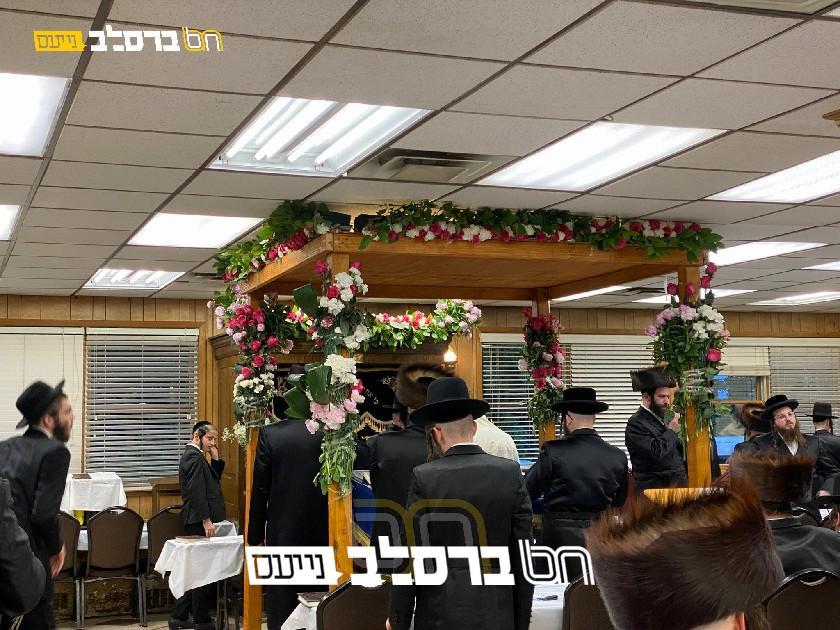 כָבוֹד לַתּוֹרָה • בית הכנסת 'ברכת הנחל' במאנסי מקושט לכבוד התורה