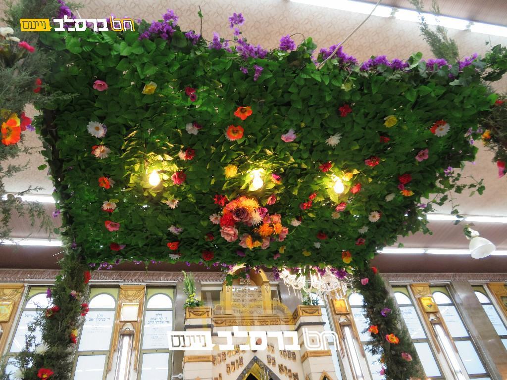צִצִּים וּפְרָחִים • בית הכנסת הגדול שבירושלים לקראת חג השבועות | גלריה שניה