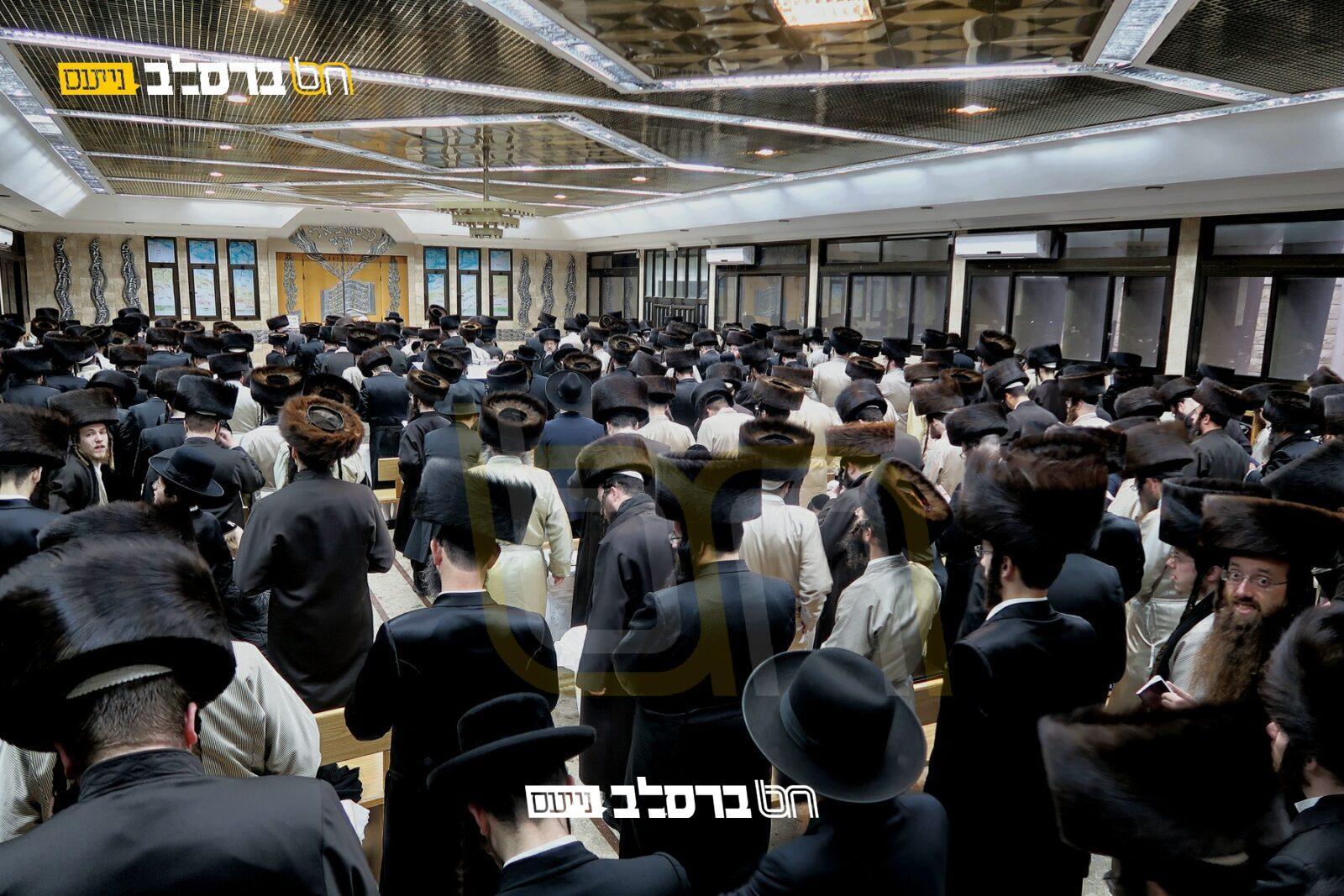 מורשת הנחל: מתכוננים לשבת התאחדות במירון   הרשמו