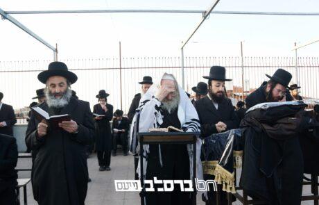 """קיבוץ תשפ""""א • כלל אנ""""ש מתכוננים לעצרת תפילה רבתית בבית הכנסת הגדול דחסידי ברסלב בירושלים"""